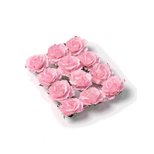 12 ROSES ROSE/TIGE 3.5CM