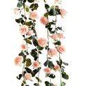 Guirlande fleurs / plantes